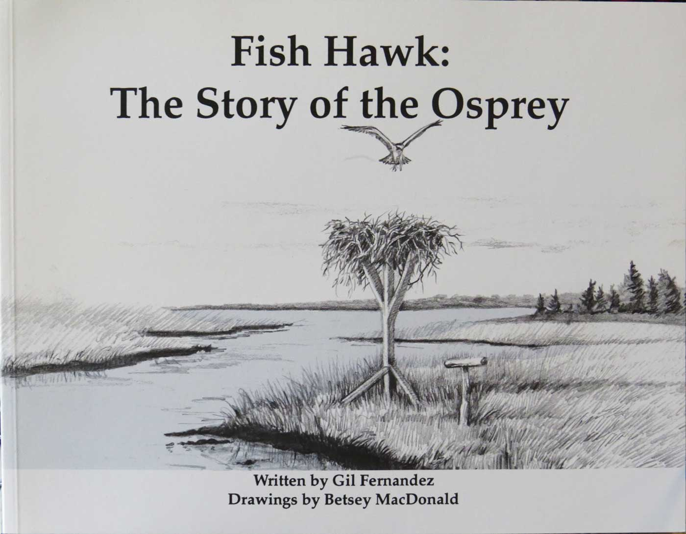 Fish Hawk the Story of the Osprey